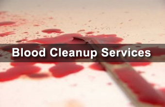 On Call Bio Michigan Offers Blood Cleaning Services
